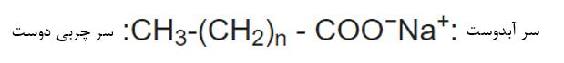 ساختار یک مولکول صابون